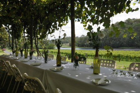 Gorgeous winery setting