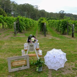 day_delights_sydney_hens_events_farewell