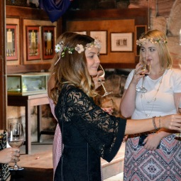day_delights_sydney_hens_events_wine_tasting