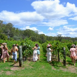 day_delights_sydney_hens_events_winery_frolick